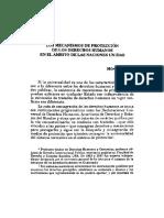 Los Mecanismos de Protección de Los Derechos Humanos en El Ambito de Las Naciones Unidas