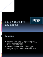 Ny Dairi File
