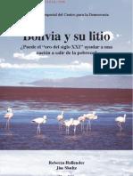 Bolivia y Su Litio Analisis 2010