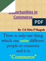 Opportunities in Commerece