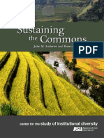 Sustaining the Commons