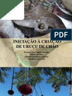2016 Agroecologia 11022016 Iniciacao Criacao Urucu Do Chao