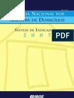 sintesepnad2007