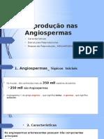 Reprodução nas Angiospermas_VERSÃO 03.