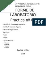 INFORME-DE-LABORATORIO (1)