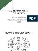 Determinan Kesehatan