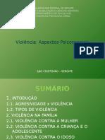 Slides II - Violência