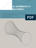 Estructuras algebraicas 4, algebra multilineal