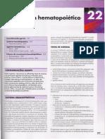 22 Sistema Hematopoiético