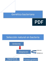 Genetica Bacteriana y Patogénesis 2016