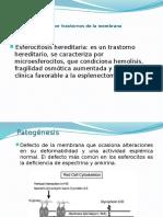 9 esferocitosis