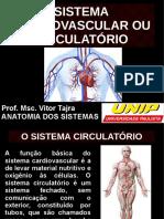 Aulas de Sistema Cardiovascular