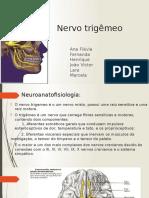 1- Nervo Trigêmeo
