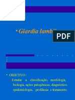 Giardia Parasito