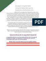 Generalidades e La Seguridad Industrial