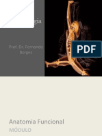 Aula 11 - Cinesiologia Anatomia Funcional 1.pdf