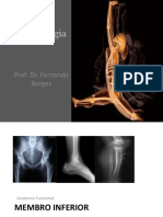 Aula 12 - Cinesiologia Anatomia Funcional 2