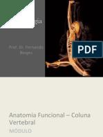Aula 13 - Cinesiologia Anatomia Funcional - Coluna Vertebral