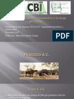 LINEA DEL TIEMPO . IB y SS.pdf