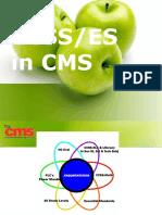 CCSS ES in CMS