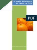 242086148 Diseno de Una Planta Procesadora de Nectar de Fruta Docx