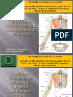 Hombro Radiologia