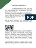 Penggunaan Antibiotik Pada Infeksi Saluran Pernapasan