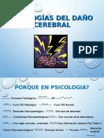 Etiologias Del Daño Cerebral