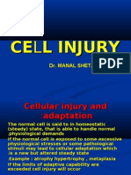 Cell Injury