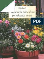 Plante-balcon-si-terasa-pdf.pdf