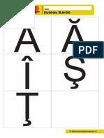 010 Fise Cu Litere de Tipar Diacritice