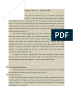 Analisis Strategi Pt Unilever