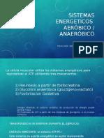 FIFIOTERAPIA 10 Metabolismo.pptx