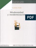 Modernidad y modernizacion