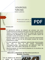 Casos de Parvovirus Porcino Expo
