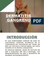 Dermatitis Gangrenosa