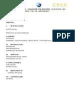 Estructura de Informe de Laboratorio