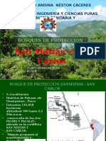 Bosques de protección San Matias San Carlos.pptx