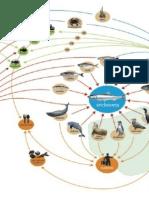 Impacto Ecosistémico Del Sector Pesquero