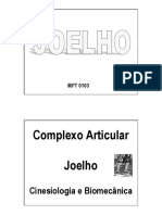 112689145 Biomecanica Do Joelho