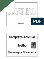 112689145 Biomecanica Do Joelho