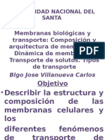 Membrana membrana Celular-Bioenergetica