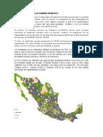 Panorama Del Desarrollo Humano en México