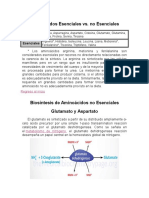 Aminoácidos Esenciales Vs No esenciales