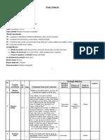 Proiect Didactic Modelaj