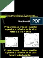 PRESENTACION ANTROPOLOGIA.pptx