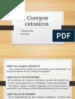 Cuerpos Cetonicos