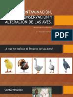 Alejandra Páez Mena- Exposición 2- Semana 2
