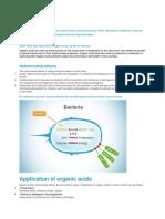 Organic Acids BASF