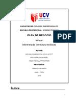 Plan Para Financiera Terminado